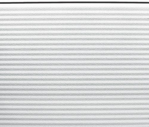 segmentas macrorib